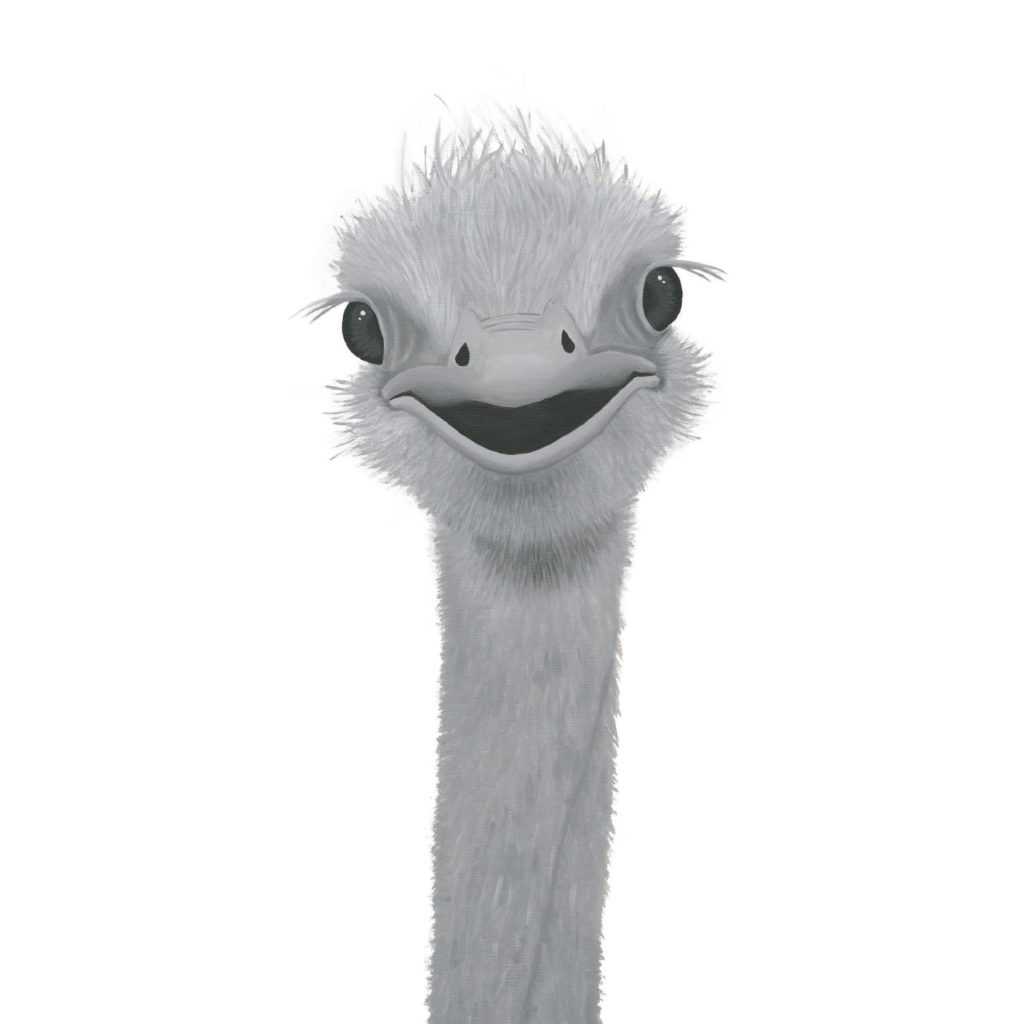 Olivia the Ostrich - Reflections by Megan